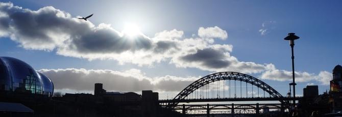 Newcastle Flights